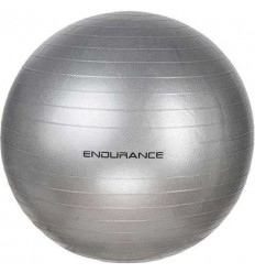 Endurance Gym Ball 55cm