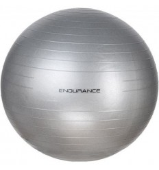Endurance Gym Ball 65cm