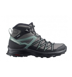 Salomon Daintree MID GTX